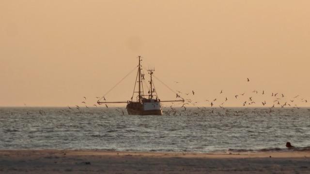 st-peter-ording-krabbenkutter-nordsee-schifffahrten